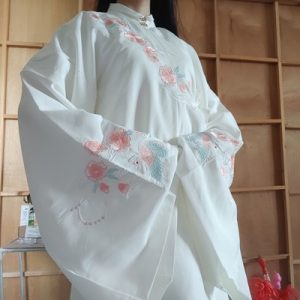 Chinese Ancient Clothes Song Dynasty Hanfu Embroidery Hanfu Dress photo review