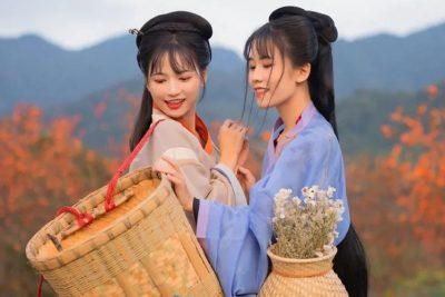 Hanfu And Harvest Season Is So Beautiful – Hanfu Photography